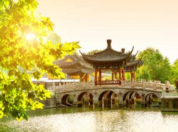 یادگیری زبان چینی و اهمیت آن