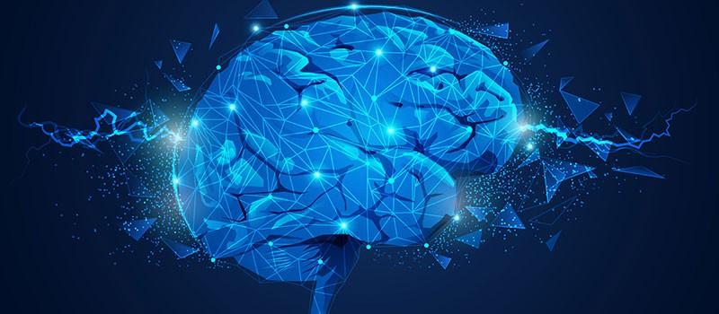 تقویت حافظه با یادگیری زبان