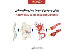 درمان بیماری های نخاعی