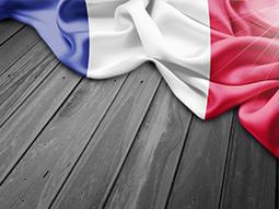 زبان فرانسه در خاورمیانه